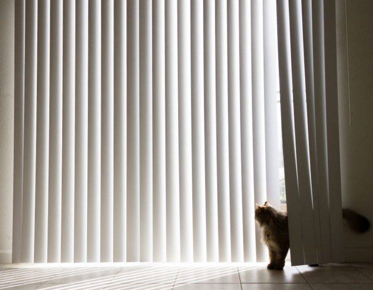 white vertical blinds with cat peeking through